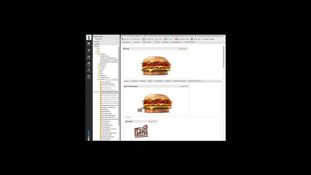 Pimcore provided a multi-lingual content management framework solution for Burger King - 3